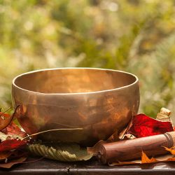 singing bowl made of seven metals surrounded of colorful autumn leaves