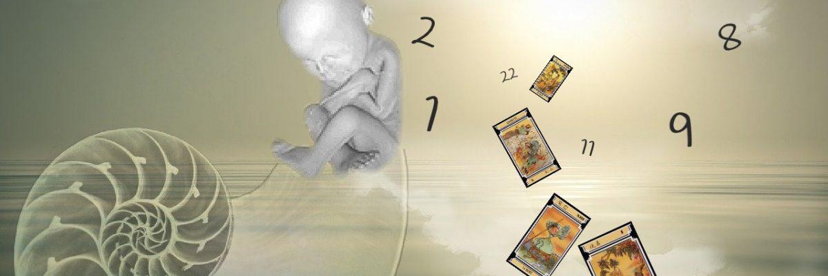 numerologie-